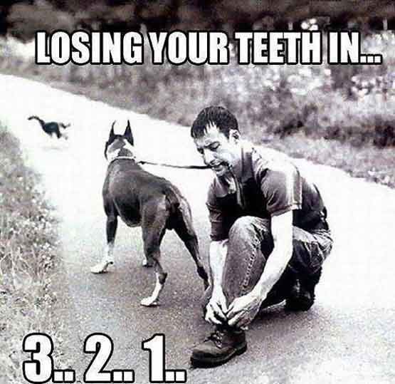 Countdown to Losing Your Teeth