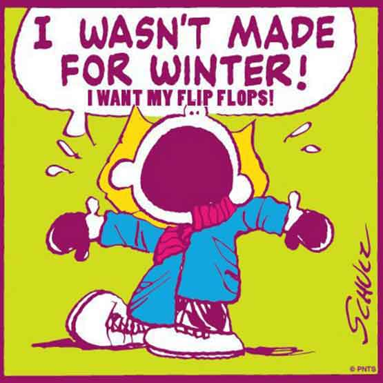 Image result for winter jokes