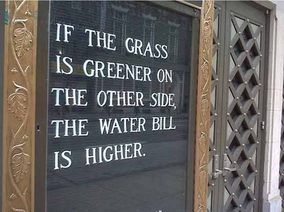 If the grass is greener on the other side