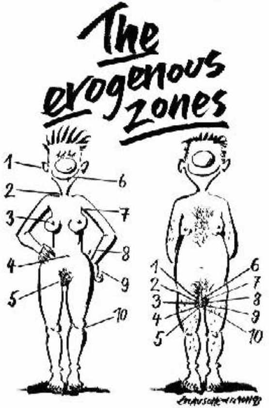 Erogenous Zones