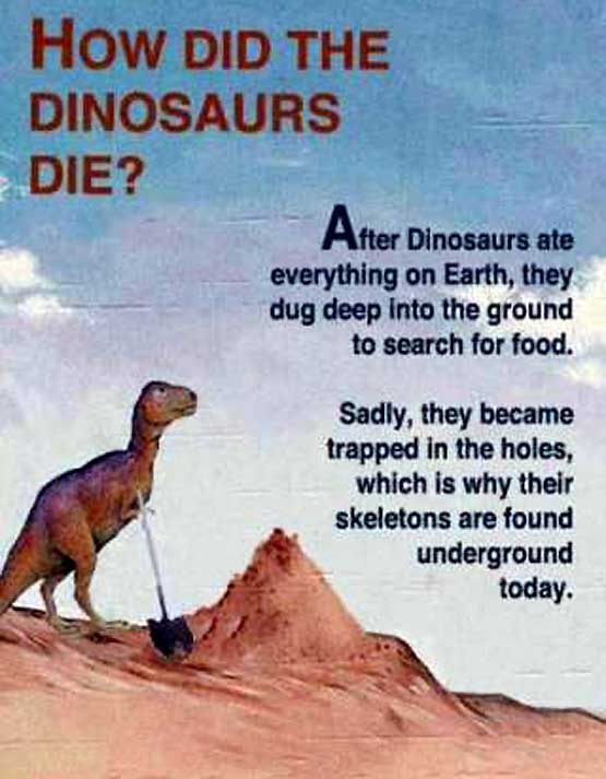 Now I Know Why all the Dinosaurs Died