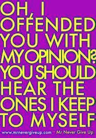 Oh I offended you with my opinion, you should hear the ones I keep to myself!!!