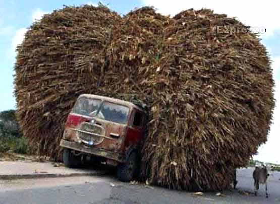 Safety at Work - Overloaded Lorry-002